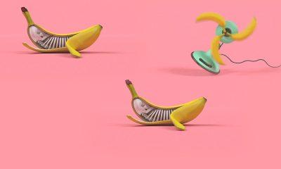 Banánok meglepő, absztrakt helyzetekben! – Nemigen! Magazin