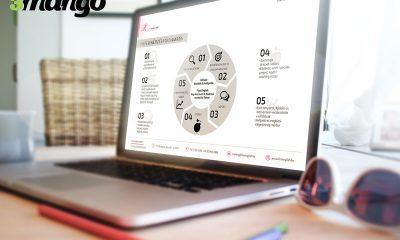 Folyamatábra, infógrafika és piechart, azaz diagram grafikai tervezése - 3 Mangó