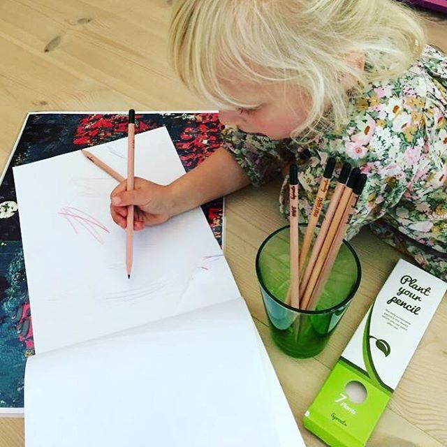 Ceruzákból konyhakert! – Nemigen! Magazin